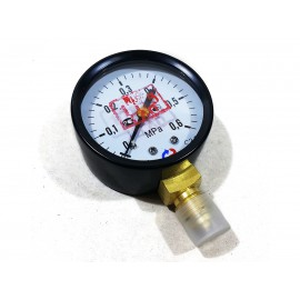 Манометр низкого давления ТМ-31 ОР(0-0.6 МПа) G1/4 RSTM